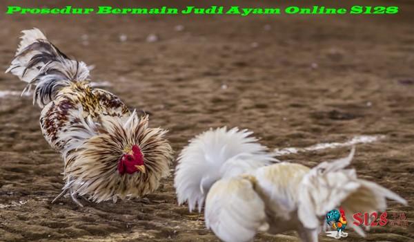 Prosedur Bermain Judi Ayam Online S128