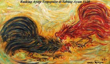 Ranking Ayam Terpopuler di Sabung Ayam S128